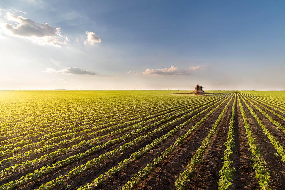 Buenas Prácticas Agrícolas (BPA) y Ganaderas (BPG)